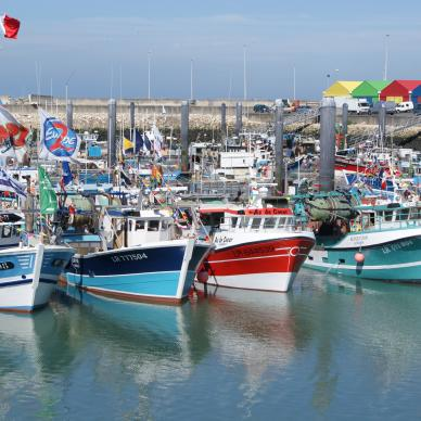 The Port de Pêche (fishing port), high level of expertise
